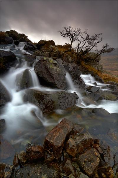Cascades by jeanie