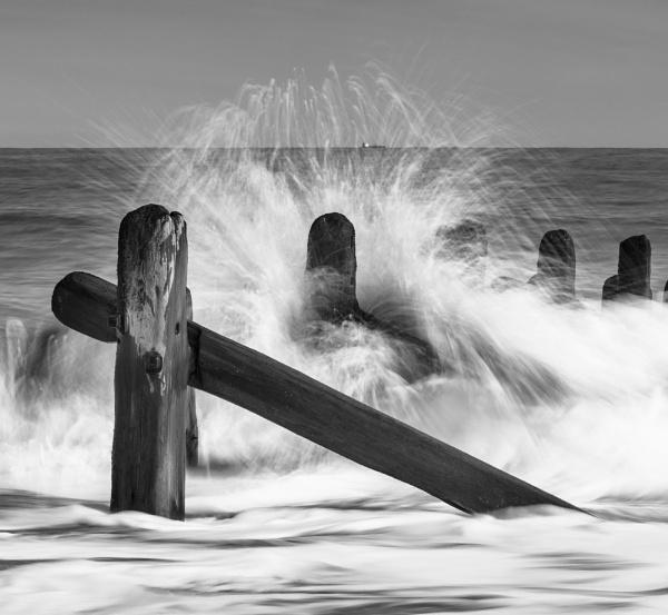 Splash ! by Trevhas