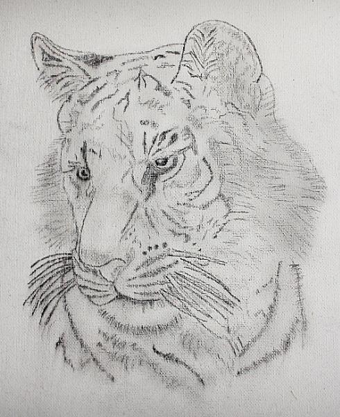 One i drew earlier by terryxc