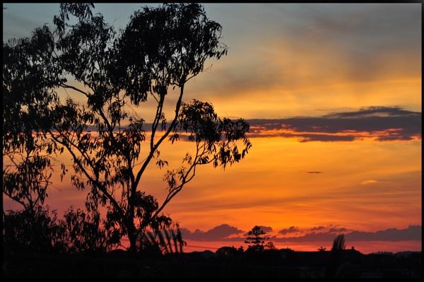 sunset by mrtower