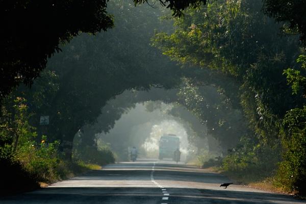 Towards ... by rajasekaranamie