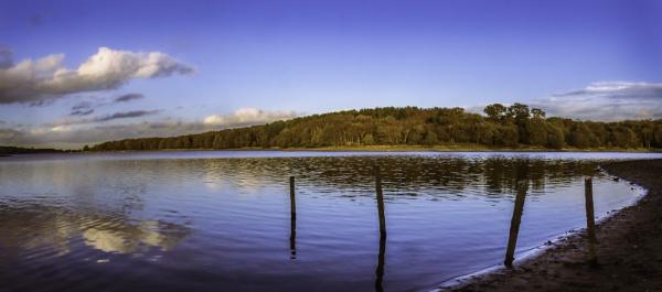 Shoreline by RLF