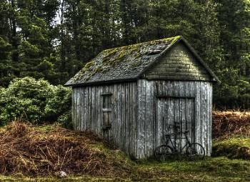 old bike shed