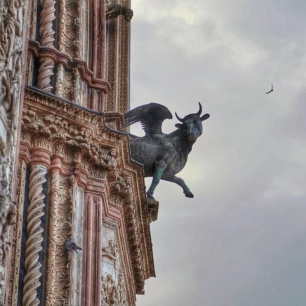 duomo, Orvieto by pascalg