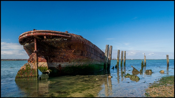 Rust and Decay by Terry L