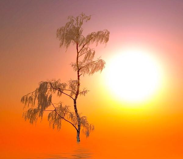 Nous sommes du solei... by Jou©o