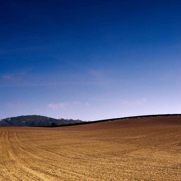 Landscape by eskimo