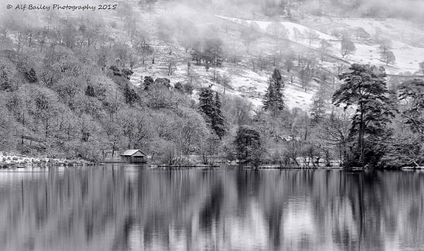 Still Winter by Alffoto