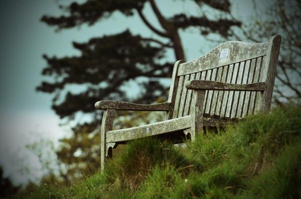 The High Chair by NattieB68