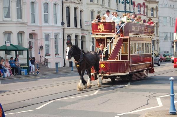 Horse drawn tram by cegidfa