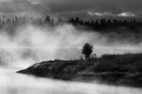 Dawn mist by dven