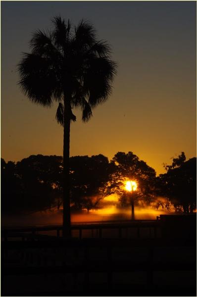 Florida sunrise by wsteffey