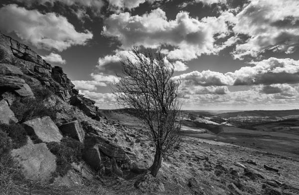 Clouds by Trevhas