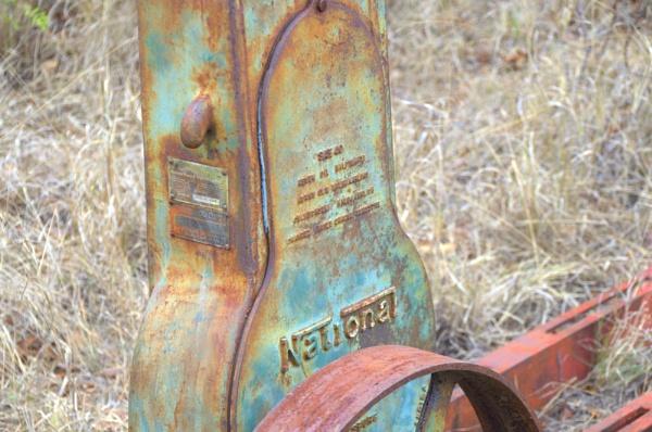 Bush rust by ColleenA