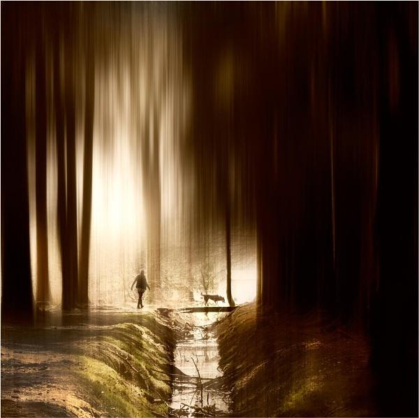 Dark to Light 3 by MalcolmM