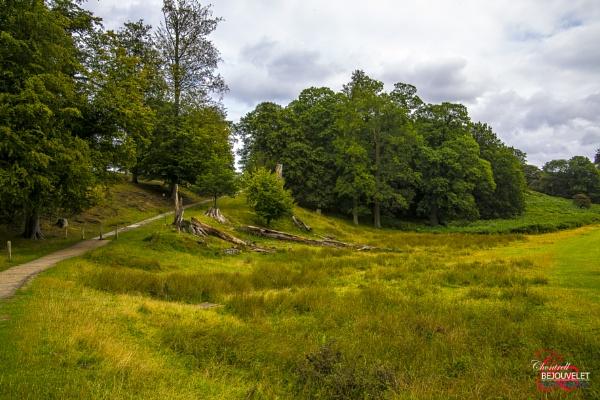 Knole Park, Sevenoaks 3 by Chontrell