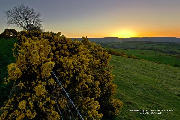 Sunset over Larne, Co Antrim by ANIMAGEOFIRELAND