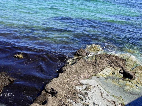 ~ Ocean Water & Rocks by LexEquine
