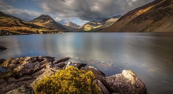 Wasdale Gorse (Landscape) by BobShaw