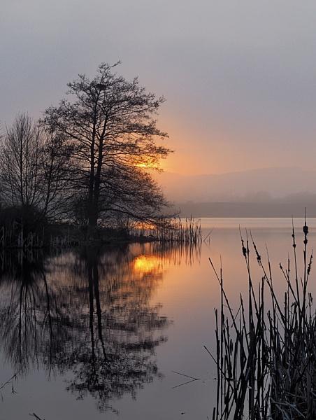 Mist on the mill loch ...