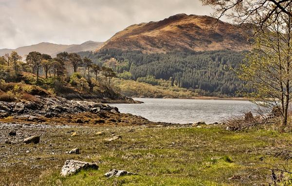 Loch Sunart, Scotland by malburns