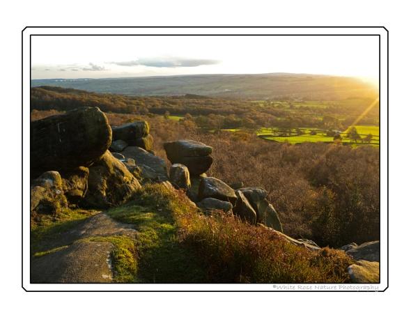 Evening Sun, Brimham by Drighlynne
