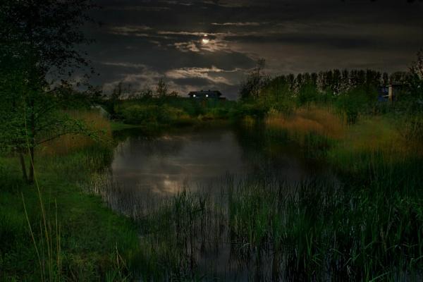 Moonlit pond by colijohn