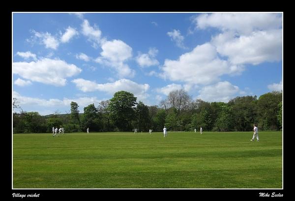 Village cricket by oldgreyheron