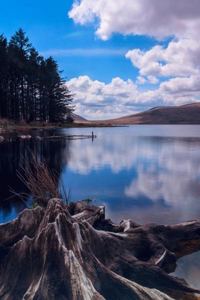 Peaceful wonder by marc484ie