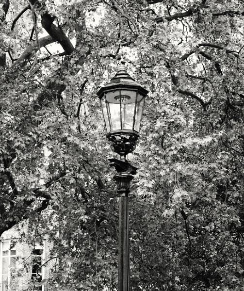 Gas light by adamsa