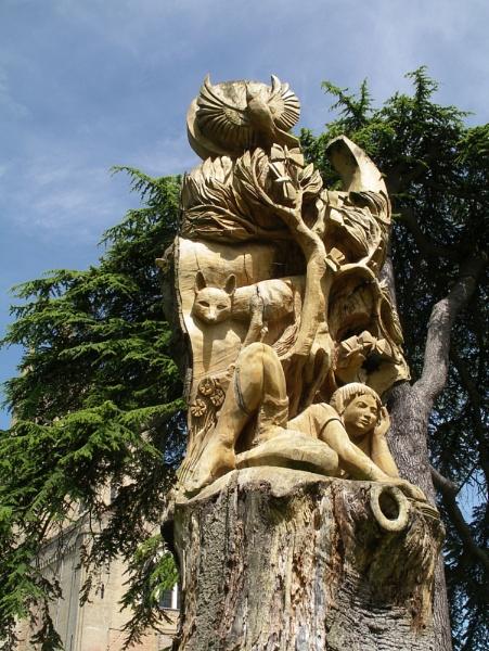 Dead Beech Carving by johnwnjr