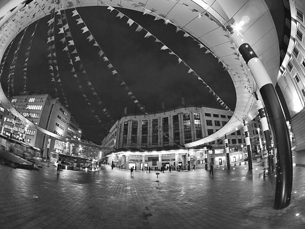 the circle by Joao_Lopes