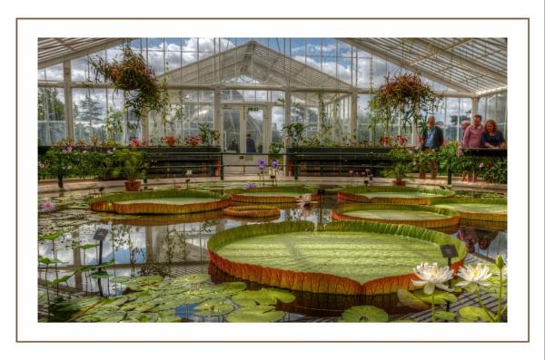 Kew Gardens by sweetpea62