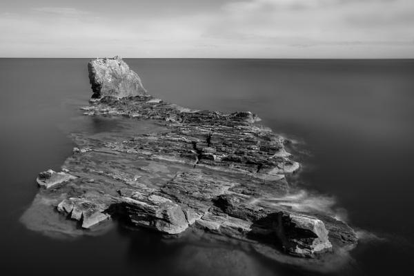 Sea Ledge : Devon by rickhanson