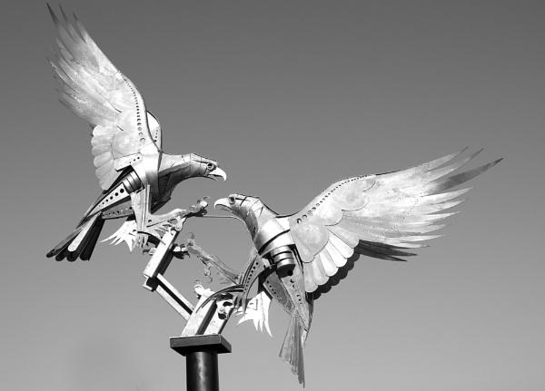 Malvern Buzzards by peterjay80