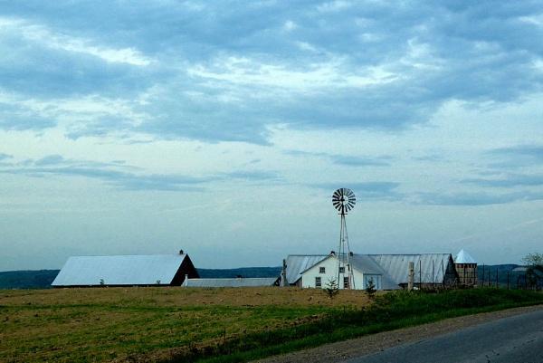 Amish Farm by Joline