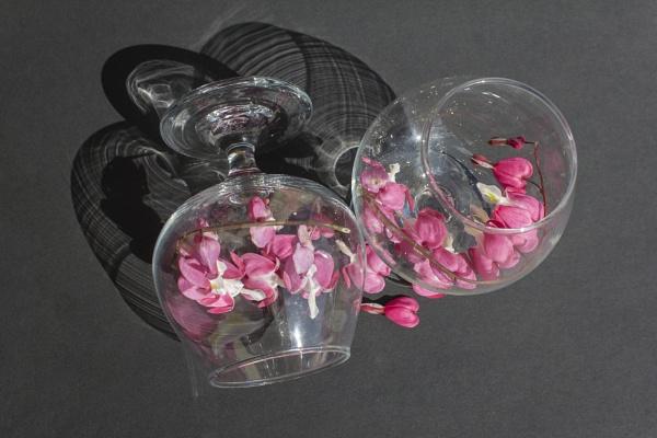 Pretty In Pink by Trawden