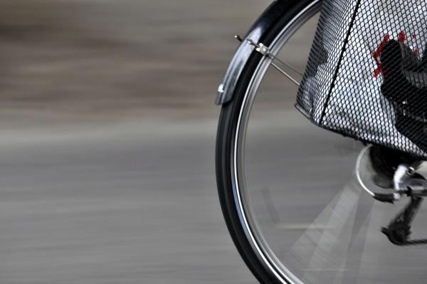 Wheelin by LCE