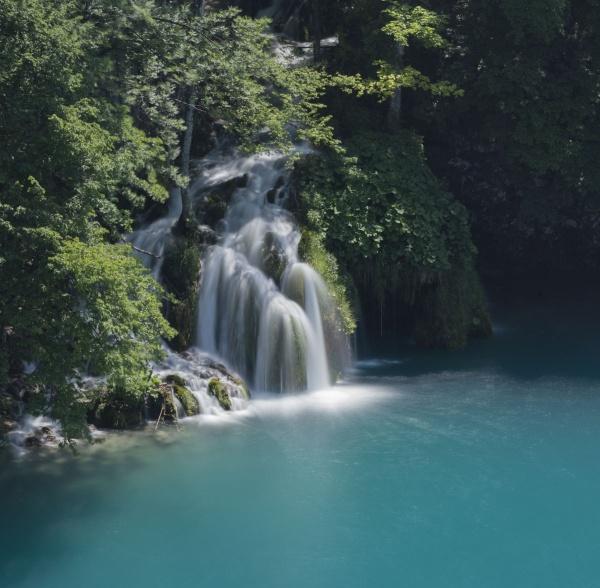 One from Croatia by Kim Walton