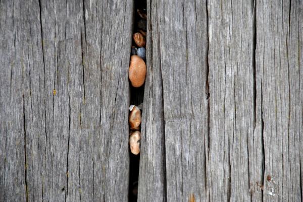 Stuck on Wood... by Chinga