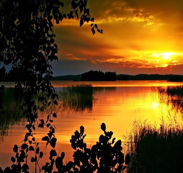 Golden sunset by Jou©o
