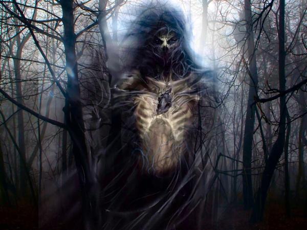 Woodland Spirit by andersonvideopro