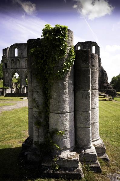 Roche Abbey by pentaxpatty