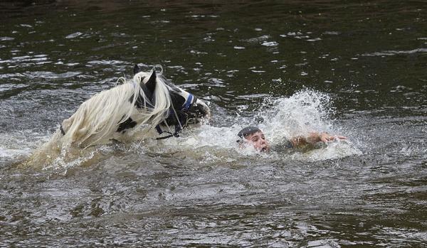 Fallen Rider by danbrann