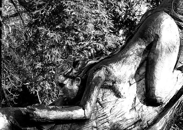 Tree Sculpure by peterjay80