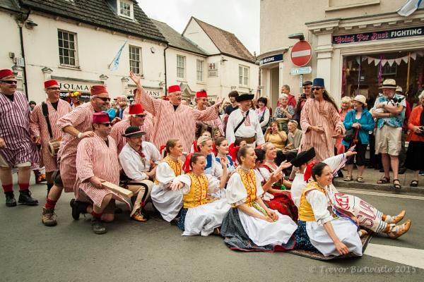 Wimborne Folk Festival 2015 by Trev_B