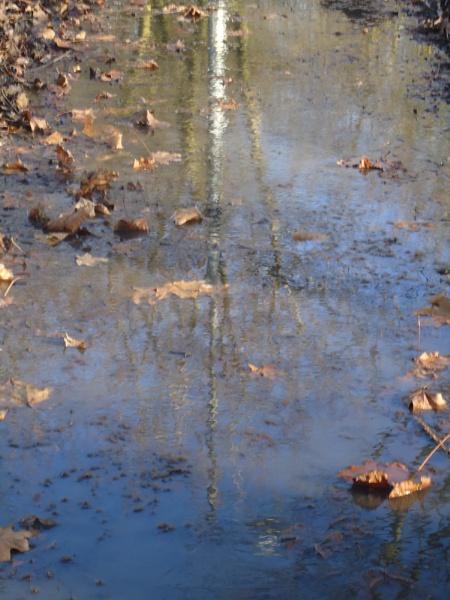 Reflections by sallycymraeg