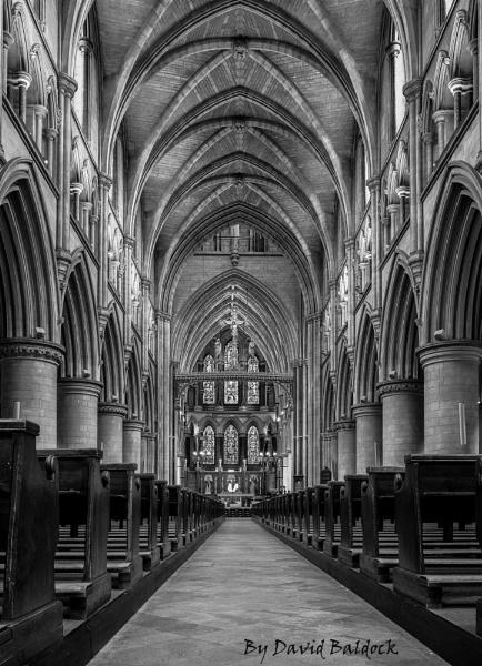 Norwich Catholic Cardinal by davebk