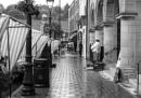 """""""Great Oak Street"""" by Willmer"""