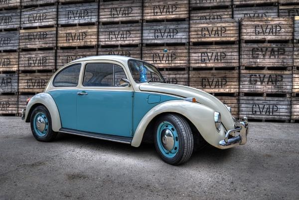 Jaime\'s Beetle by jonkennard